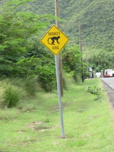 Road sign, Nevis