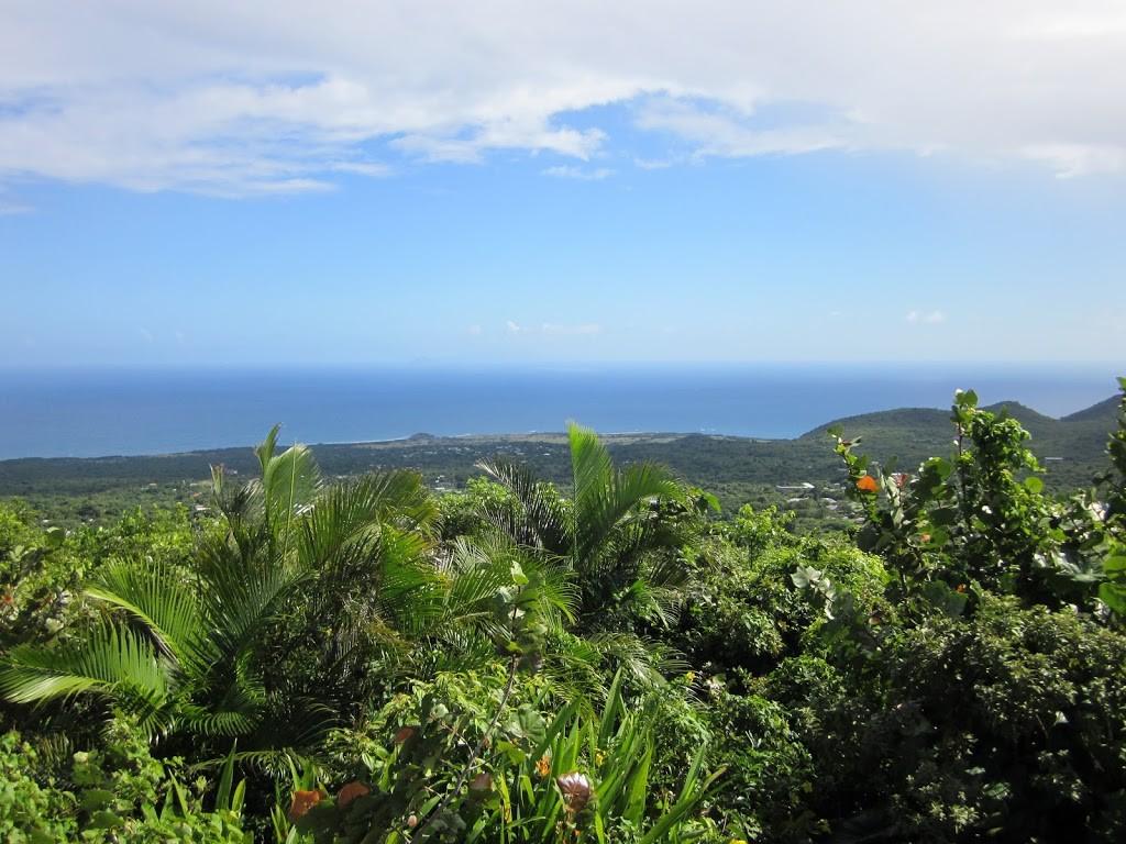 View from Peak Heaven, Nevis