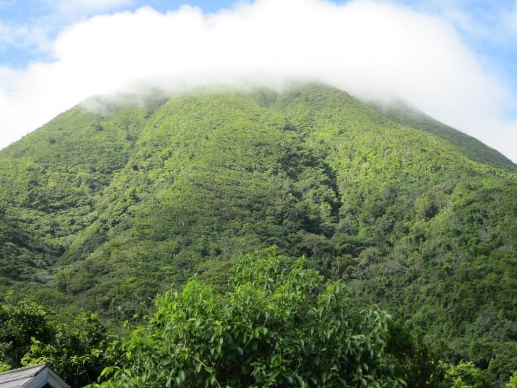 mist over Mount Nevis