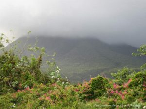 The mist atop the lush Mount Nevis in the Caribbean