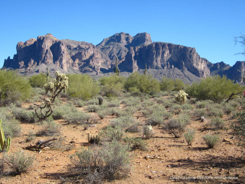 Landscape at Superstition Mountain Museum in Apache Junction, Arizona