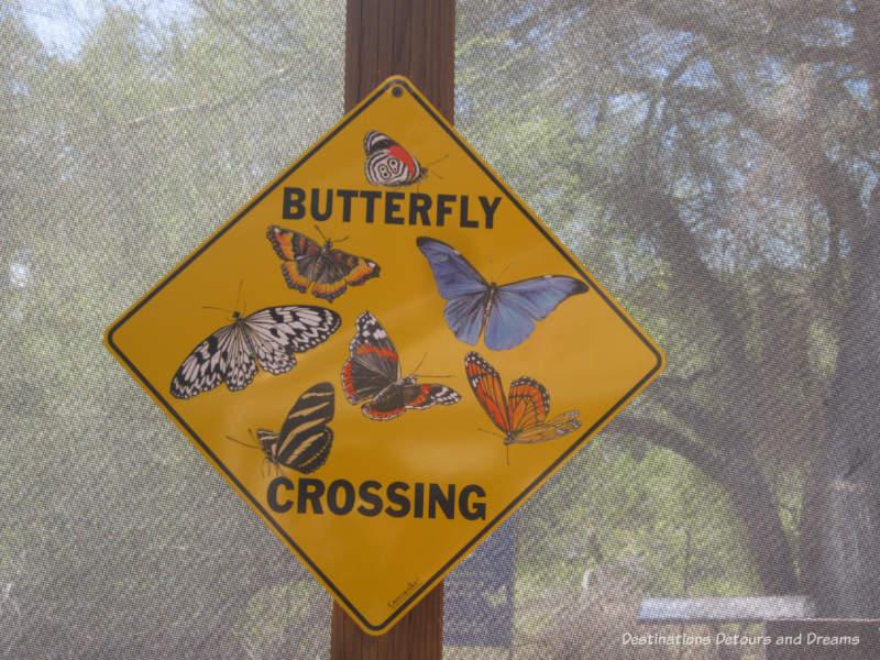 Butterfly Exhibit at Phoenix Desert Botanical Garden