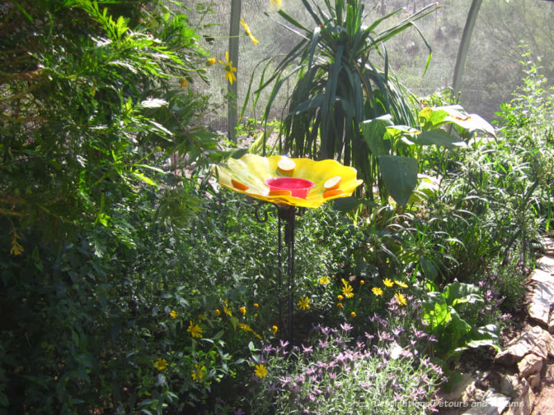 Butterfly house with flowering plants at Phoenix Desert Botanical Garden