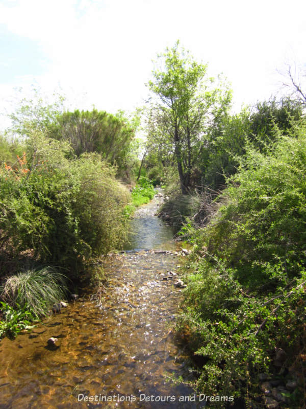 Stream at Gilbert Riparian Preserve in Gilbert, Arizona