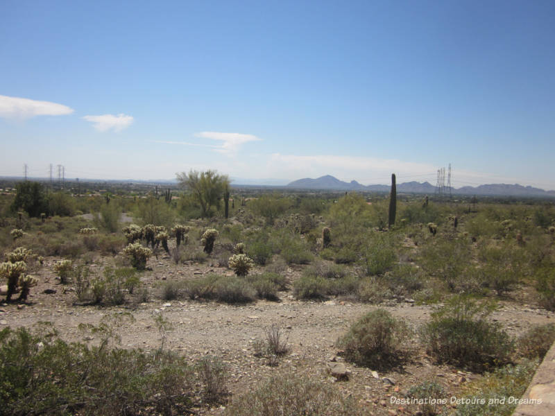 View from Taliesin West toward Scottsdale