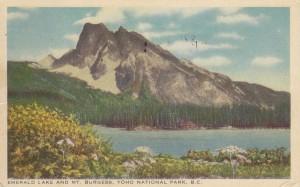 Postcard Yoho National Park