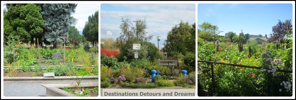 Vancouver community gardens