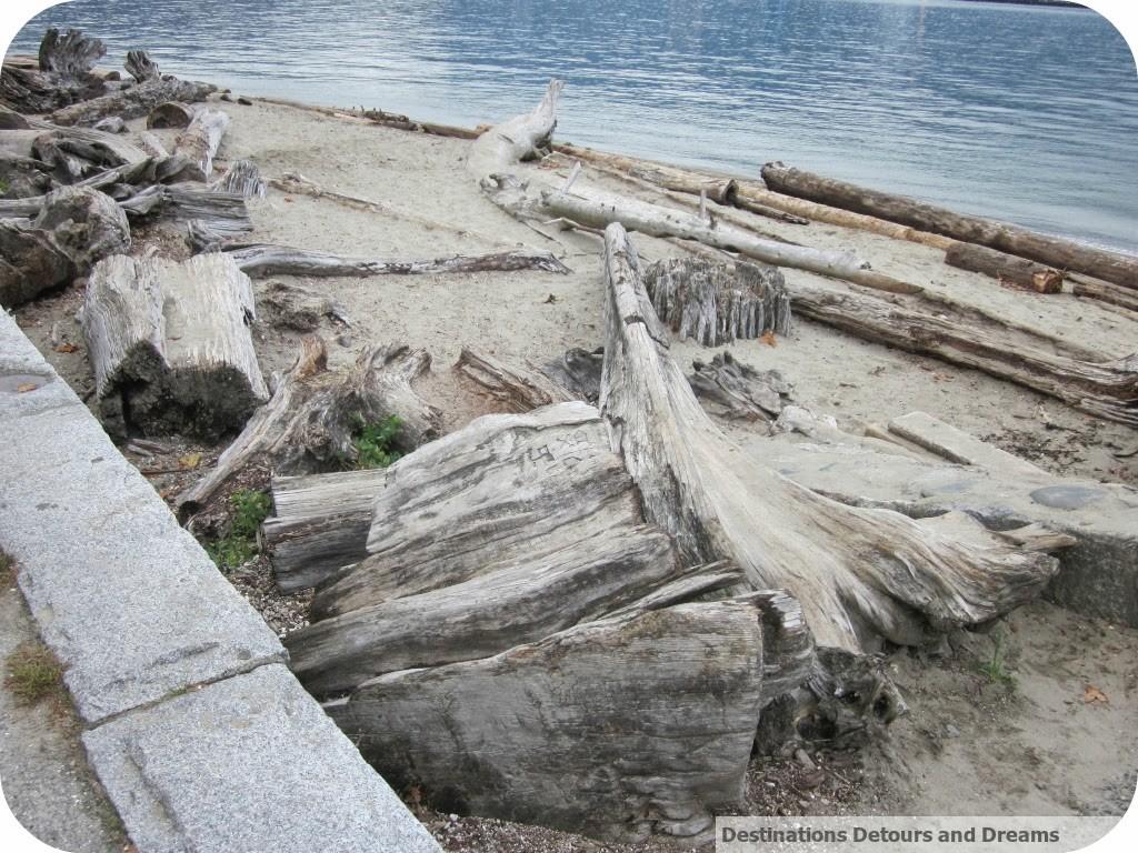 driftwood Stanley Park seawall
