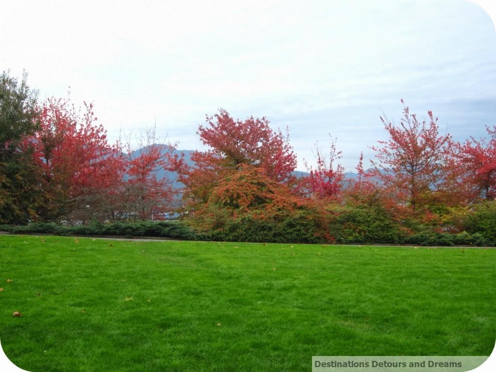 Stanley Park autumn colours