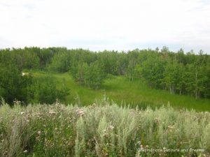 FortWhyte Alive: a 640-acre nature preserve in Winnipeg, Manitoba