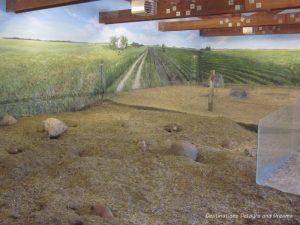 Prairie dogs in interpretative centre at FortWhyte Alive: a 640-acre nature preserve in Winnipeg, Manitoba