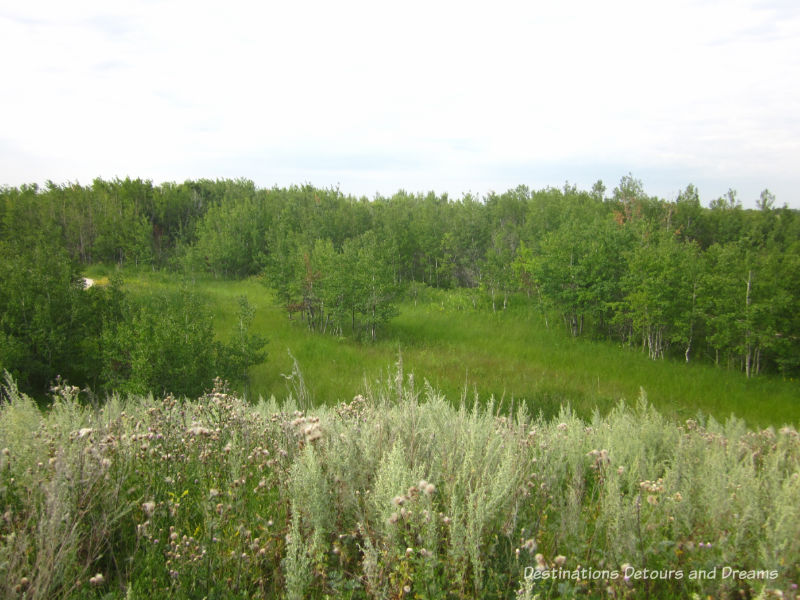 FortWhyte Alive: a 640-acre nature preserve in Winnipeg, Manitoba