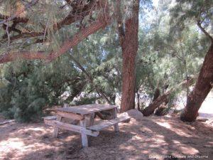 Picnic area at World's Smallest Museum in Superior, Arizona
