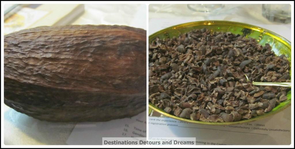 cacao pod and cocoa nibs