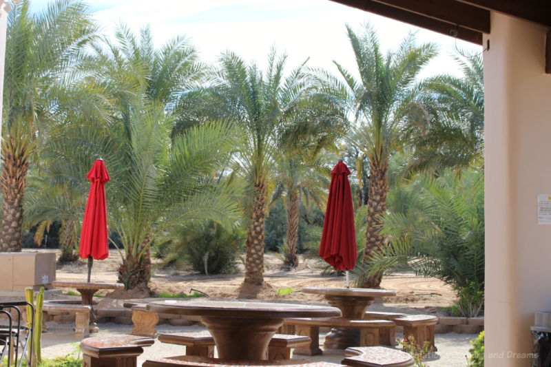 Patio area at Martha's Gardens Date Farm in Yuma Arizona