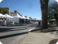 Overwhelmed and Amazed at Tucson Festival of Books