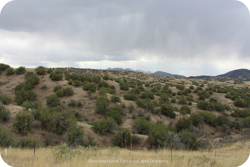 Scenery on Sonoita-Elgin trail