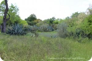 San Antonio Botanical Garden South Texas Trail
