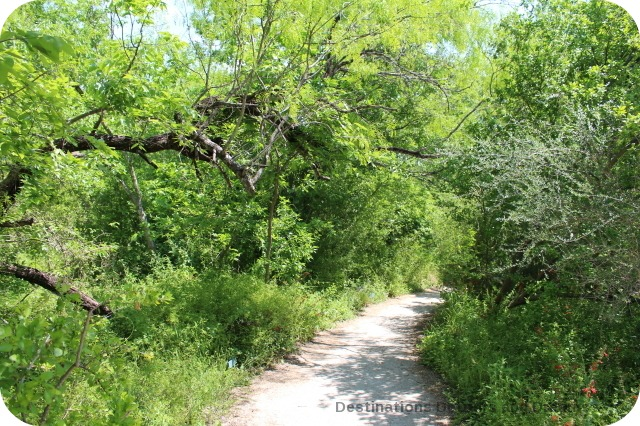 Entry to South Texas portion of Texas Trail