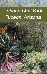 Gardens, art and desert beauty at Tohono Chul Park in Tucson