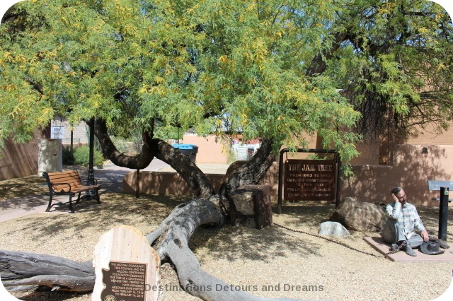 Wickenburg Jail Tree