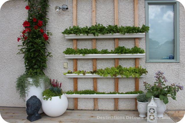 Vertical greens garden