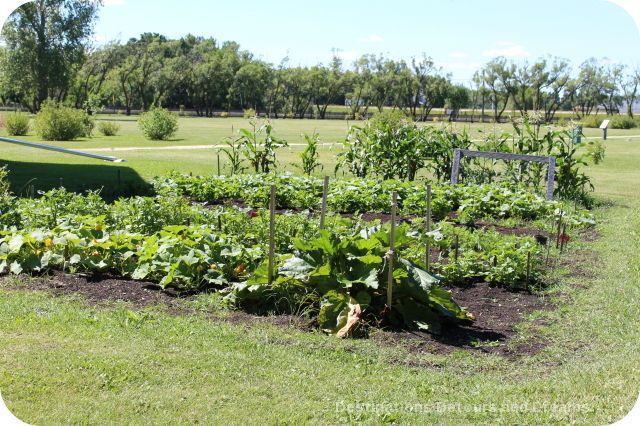 Garden at St. Norbert Heritage Park