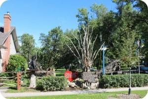 Garden in River Heights, Winnipeg