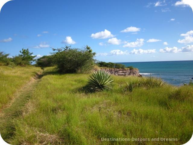 Nevis coastal walk