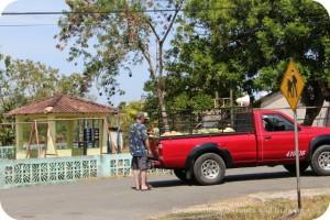 Food truck in Pedasi, Panama