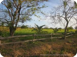 Countryside outside Pedasi, Panama