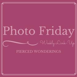 Photo Friday