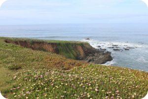 Coastline at Cambria, California
