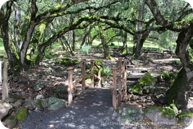 Shady picnic area at Matanzas Creek Winery