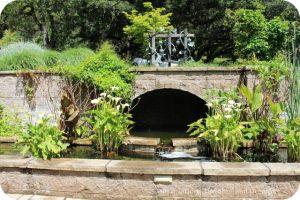 Water Garden at Matanzas Creek Winery