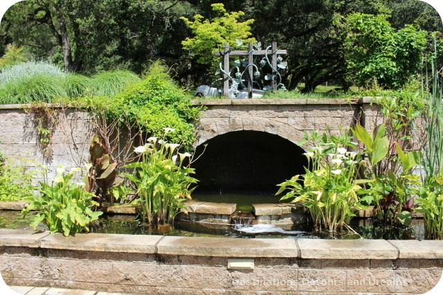 Water Garden at Matanzas Creek Winery