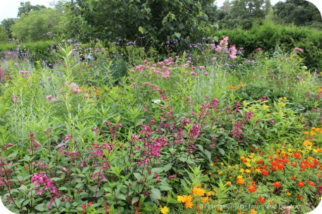 Garden outside butterfly quonsets at Assiniboine Park Zoo