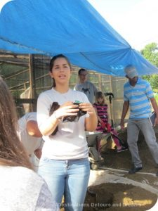 Making a Difference in the Dominican Republic: planting cacao