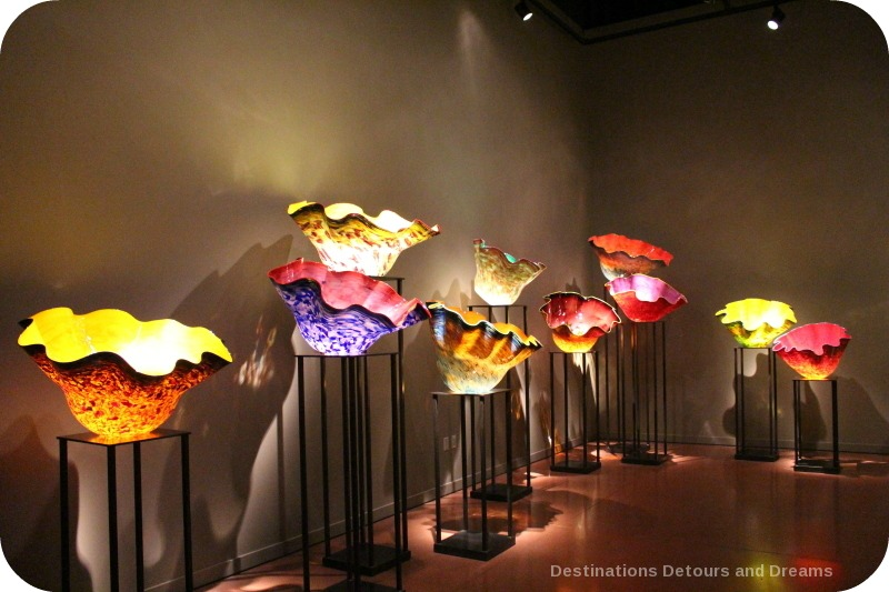 Chihuly Macchia Forest