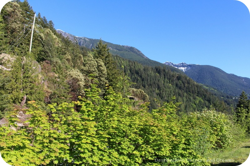 Along the Sea to Sky Highway