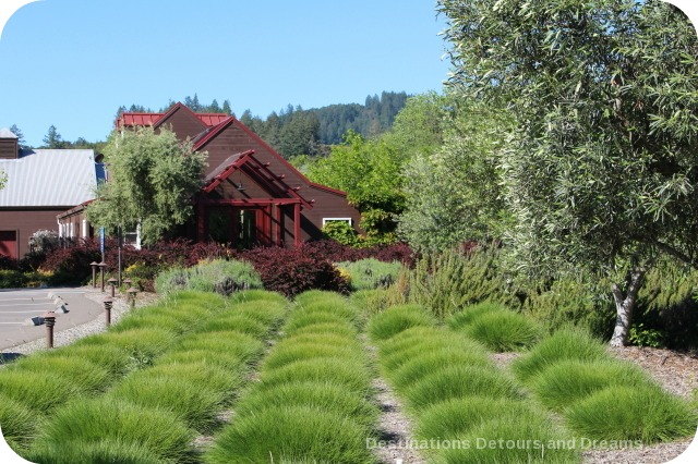 Wine in the Garden: Rustic Beauty at Truett Hurst Winery in Dry Creek Valley