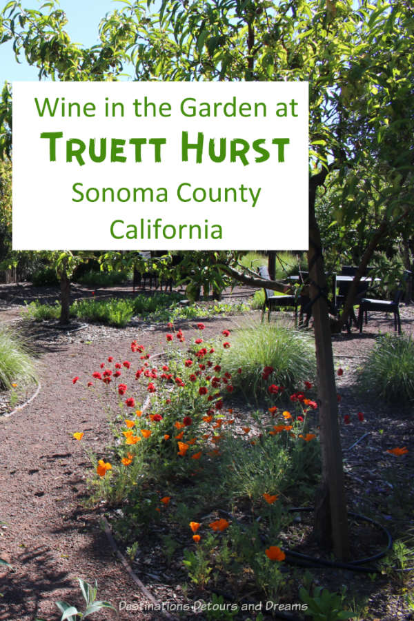 A visit to Truett Hurst winery in Dry Creek Valley in Sonoma County, California #California #winery #Sonoma