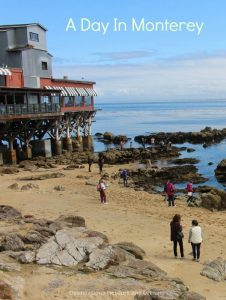 A Day in Monterey