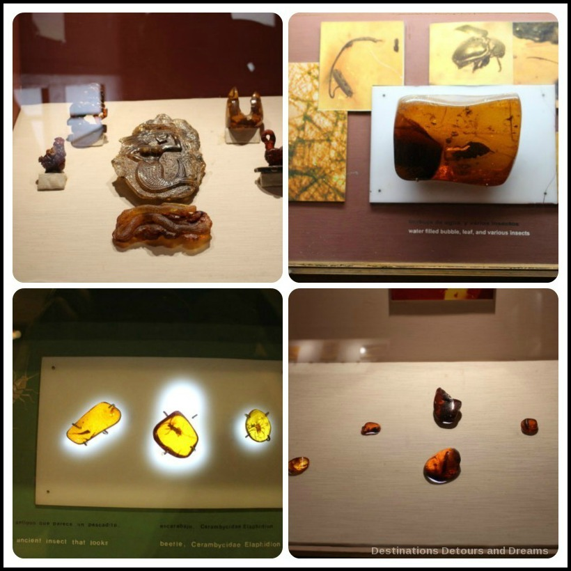 Puerto Plata Highlights: displays in The Amber Museum