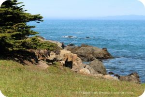 California North Coast Highlights: McKerricher State Park