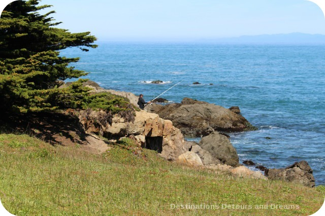 California North Coast Highlights: McKerricher State Park