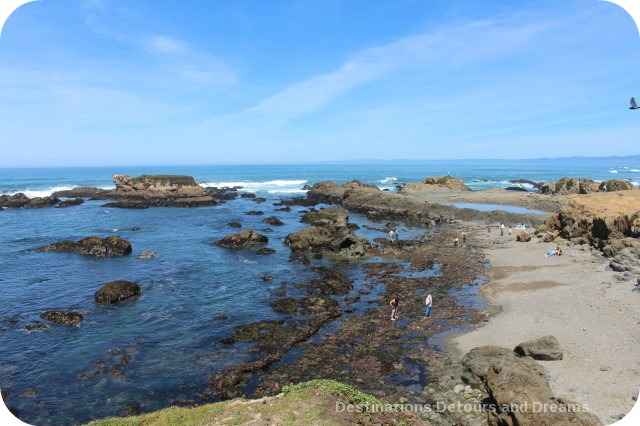 California North Coast Hihlights: Glass Beach, Fort Bragg