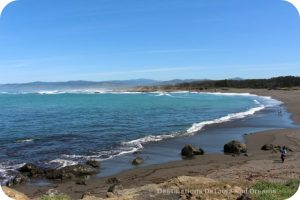 California North Coast Highlights: MacKerricher State Park