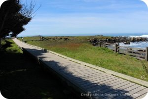 California North Coast Highlights: MacKerricher State Park