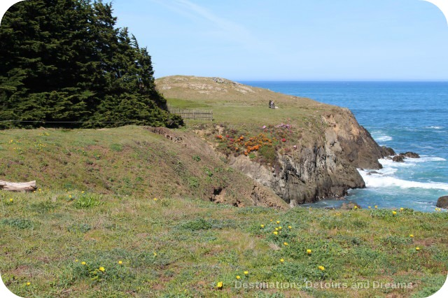 California North Coast Highlights: Mendocino Coast Botanical Gardens bluff